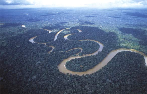 Windy Amazon River