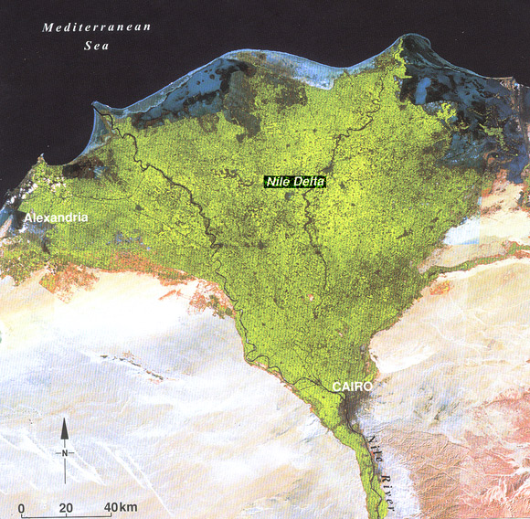 Maps Of The Nile - Map of egypt delta